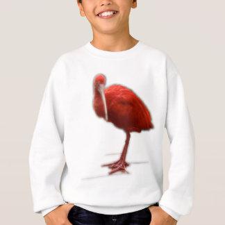 De rode Ibis geeft dit aan de vogelminnaar in uw Trui