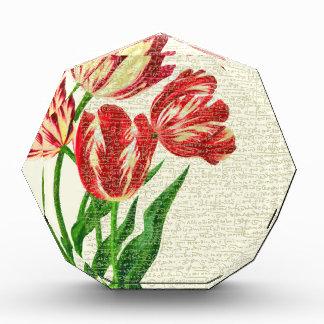 De rode Kalligrafie van Tulpen Prijs