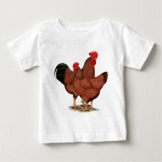 De Rode Kippen van de productie Baby T Shirts
