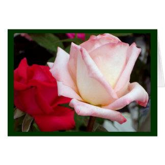 De rode Roze Kaarten van de Nota van Rozen