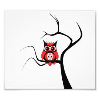 De rode Uil van de Schedel van de Suiker in de Fotografische Afdruk