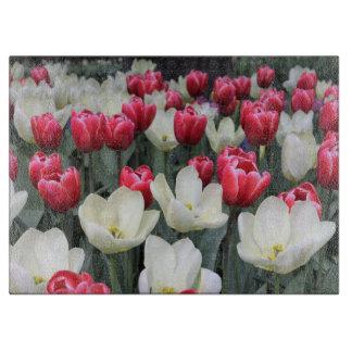 De rode & Witte Tulpen die van de Lente Raad Snijplank