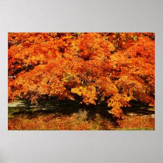 De Roest van de herfst Poster