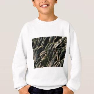 de rots buigt textuur trui