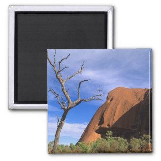 De Rots Uluru van Ayers in het Binnenland Australi Vierkante Magneet