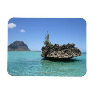 De rots van het kristal uit koraal wordt samengest magneet