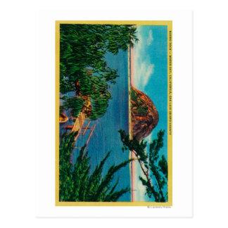 De Rots van Morro in de Provincie van Obispo van Briefkaart