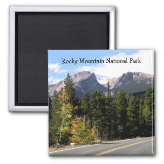 De rotsachtige Magneet van het Park van de Berg