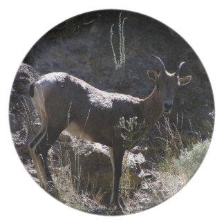 De rotsachtige Schapen van het Bighorn van de Melamine+bord
