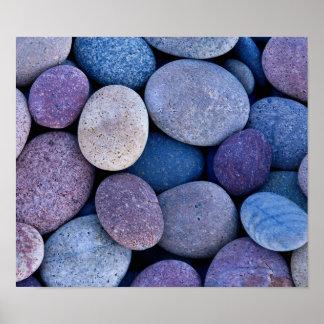 De rotsduiven van de steen poster