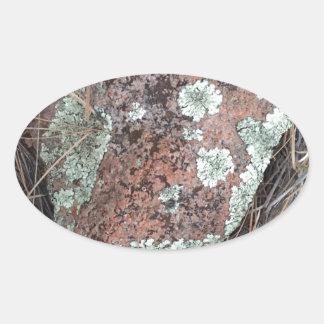 De rotskorstmos van het mos ovale sticker