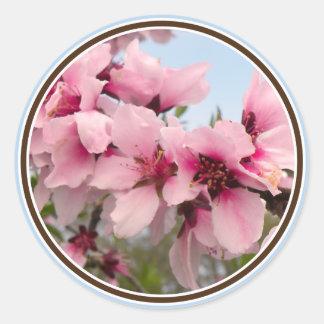 De roze Bloeiende Stickers van de Tak