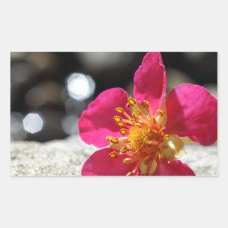 De Roze Bloem van de geheimzinnigheid Rechthoekvormige Sticker