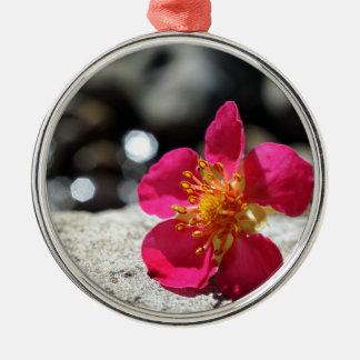 De Roze Bloem van de geheimzinnigheid Zilverkleurig Rond Ornament
