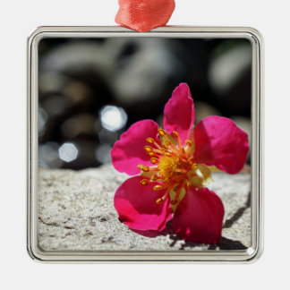De Roze Bloem van de geheimzinnigheid Zilverkleurig Vierkant Ornament