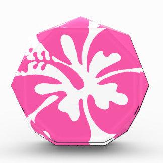 De roze Bloem van de Hibiscus Acryl Prijs