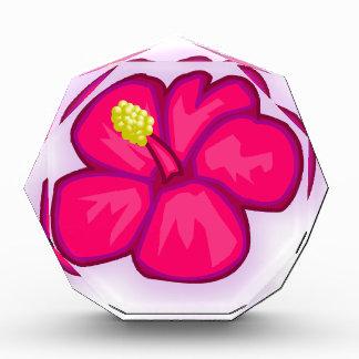 De roze Bloem van Hawaï Prijs