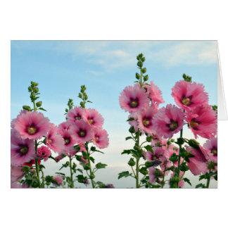 De roze Bloemen van de Stokroos Wenskaart