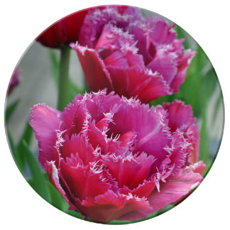 De roze bloemendruk van papegaaitulpen porseleinen bord