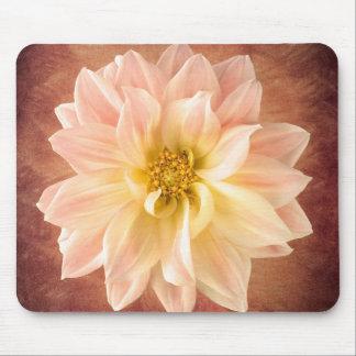 De roze Bloesem van de Bloem van de Dahlia Bloemen Muismatten