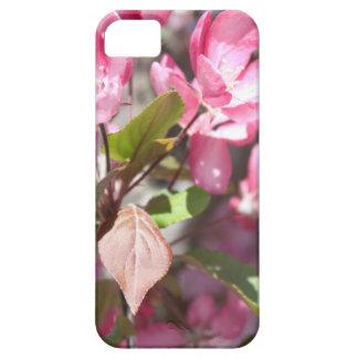 De roze Bloesems van de Bloem van de Lente Barely There iPhone 5 Hoesje
