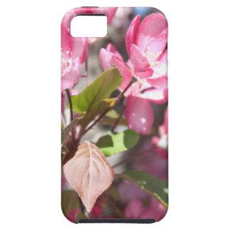 De roze Bloesems van de Bloem van de Lente Tough iPhone 5 Hoesje