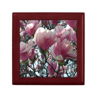 De roze Doos van de Gift van de Magnolia Decoratiedoosje