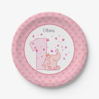 De roze Douane van de Partij van de Verjaardag van Papieren Bordje