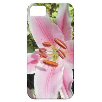 De roze en Witte Bloem van de Lelie Barely There iPhone 5 Hoesje
