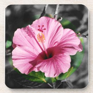 De roze Foto van de Hibiscus Onderzetter