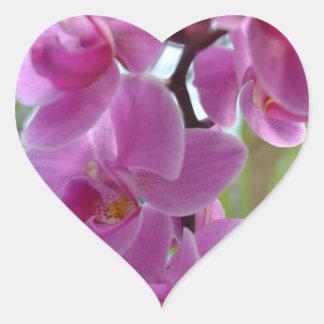 De roze Harten van de Orchidee Hart Sticker