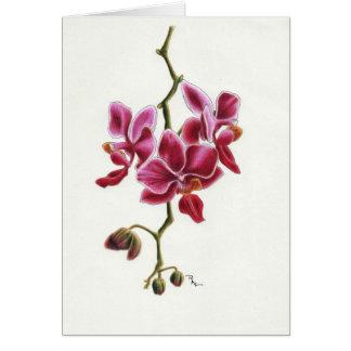 De roze Kaart van de Orchidee