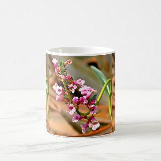 De roze Koppen van de Koffie van de Bloem van de