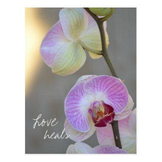 De roze Liefde van de Uitdrukking van de Orchidee Briefkaart