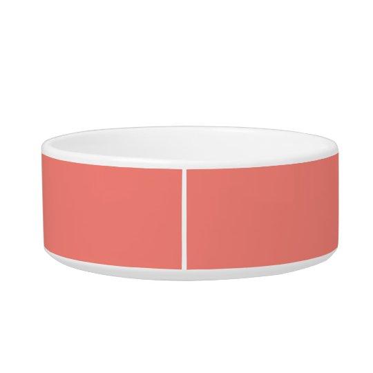 De Roze Moderne Gecoördineerde Kleur van het Poezen Voerbakje