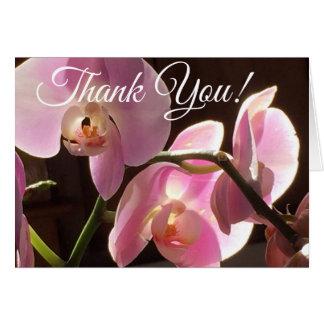De roze Orchidee dankt u kaardt Kaart