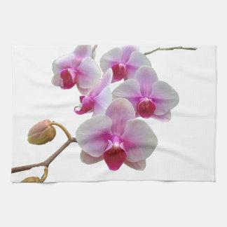 De roze Orchideeën van de Mot - Phalaenopsis Theedoek