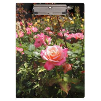 De roze tuin nam toe klembord