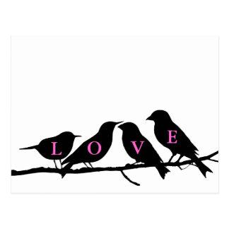 De roze Zwart-witte Vogels van de Liefde Briefkaart