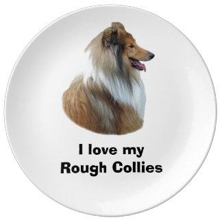 De ruwe foto van het de hondportret van de Collie Porselein Bord