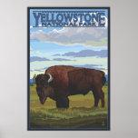 De Scène van de bizon - Nationaal Park Yellowstone