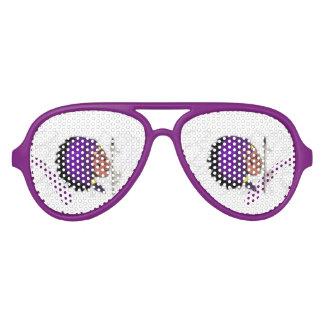 De Schaduwen van de Partij van de Vliegenier van Feestbril