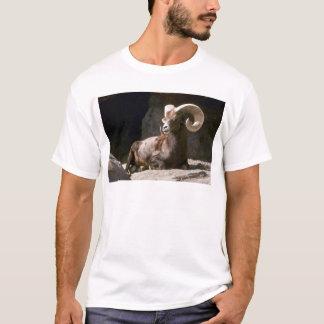 De schapen van de woestijn bighorn (Volwassen ram T Shirt