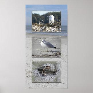 De schepselentriptiek van het water poster
