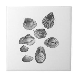 De schets van Shell Tegeltje