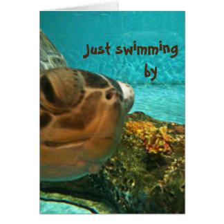De Schildpad die van het zee door Vaderdag zwemmen Wenskaart