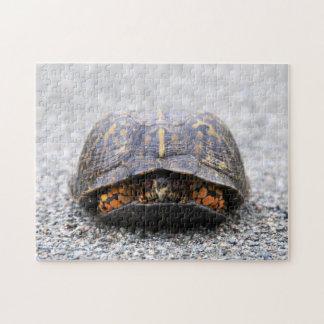 De Schildpad van de doos Puzzel