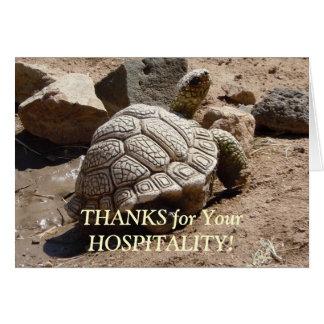 De Schildpad van de woestijn - de Gastvrijheid Kaart