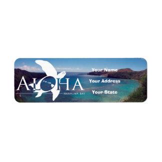 De Schildpad van Hawaï van Aloha en Baai Hanauma Etiket