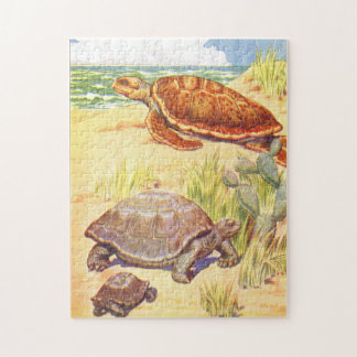 De Schildpadden van de Illustratie van het Boek Legpuzzel